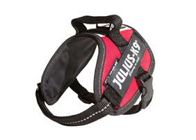 Picture of Hungarian flag, Mini Julius-K9 IDC® Powerharness