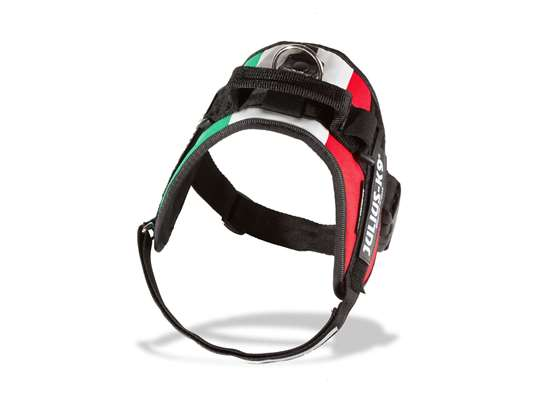 Picture of Hungarian flag, Size 3 Julius-K9 IDC® Powerharness
