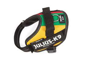 Picture of Lithuanian flag, Baby2 Julius-K9 IDC® Powerharness