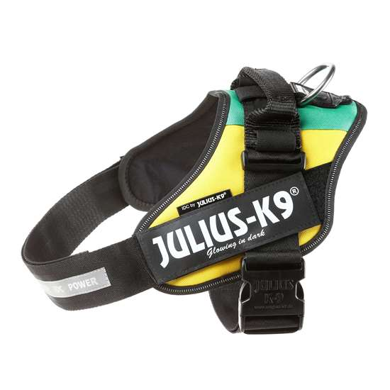 Picture of Lithuanian flag, Size 1 Julius-K9 IDC® Powerharness