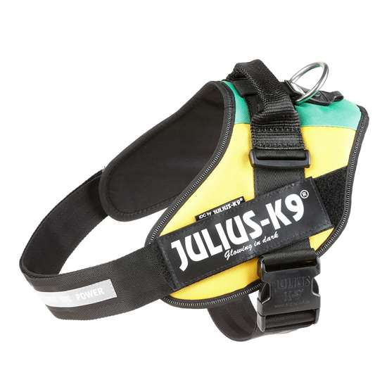 Picture of Lithuanian flag, Size 4 Julius-K9 IDC® Powerharness