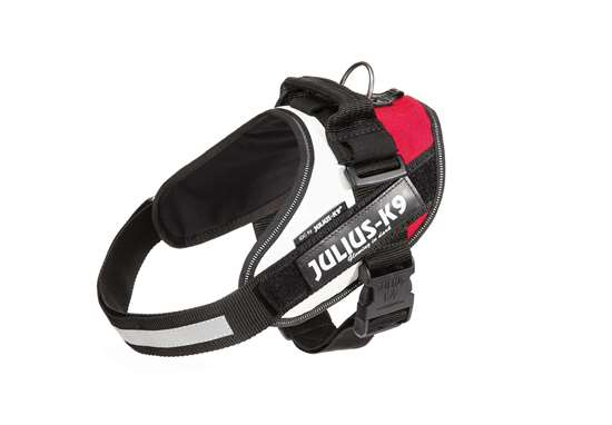 Picture of Polish flag, Size 0 Julius-K9 IDC® Powerharness