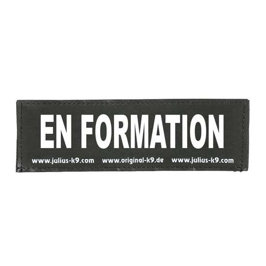 Picture of EN FORMATION (162LR-K-46523)