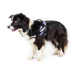 Picture for category Size 0 Powerharness