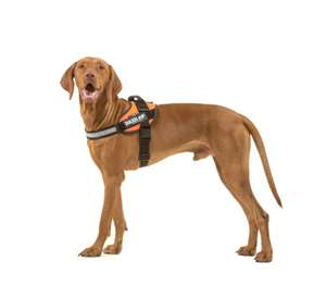 Picture for category Size 1 Powerharness