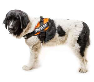 Picture for category Size 4 Powerharness