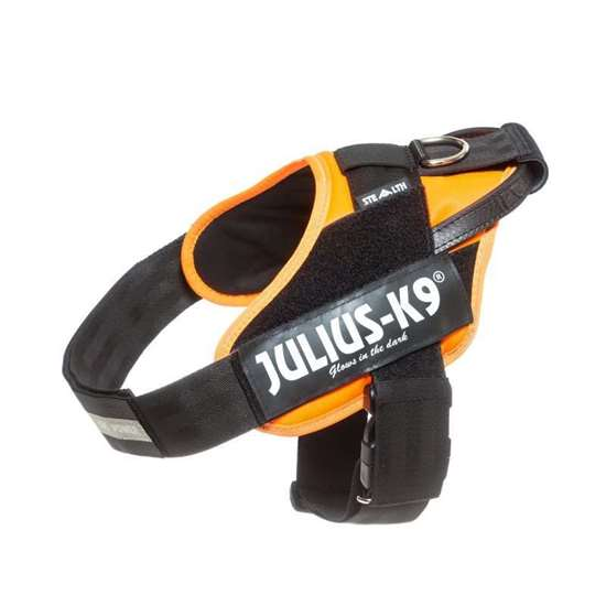 Picture of Orange IDC Stealth Powerharness - Size 1