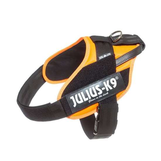Picture of Orange IDC Stealth Powerharness - Size 2